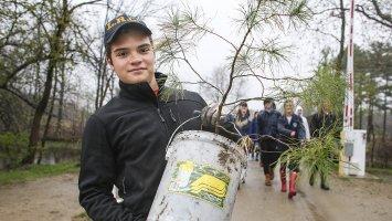 Exeter student planting tree seedling.
